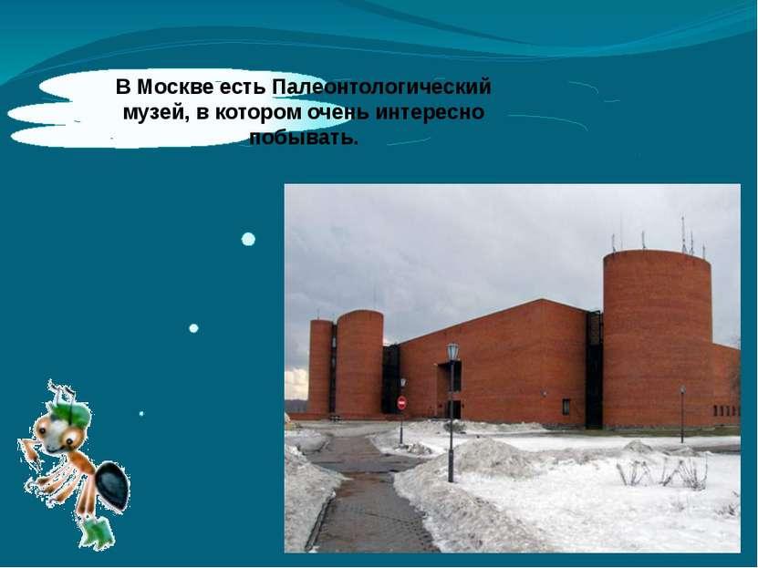 ВМоскве есть Палеонтологический музей, вкотором очень интересно побывать.