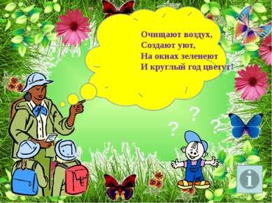 Очищают воздух, Создают уют, На окнах зеленеют И круглый год цветут! ? ? ?