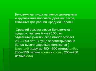 Беловежская пуща является уникальным и крупнейшим массивом древних лесов, тип...