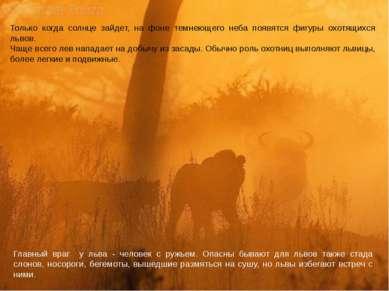 Только когда солнце зайдет, на фоне темнеющего неба появятся фигуры охотящихс...