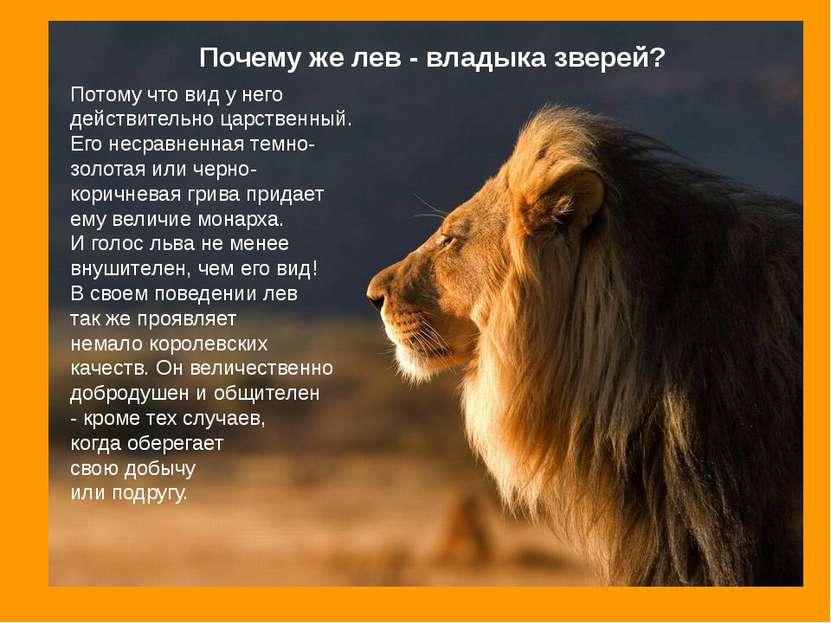 Потому что вид у него действительно царственный. Его несравненная темно- золо...