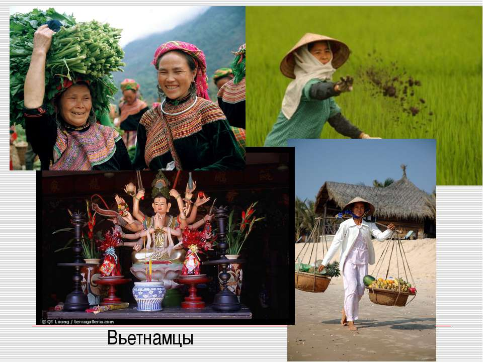 Вьетнамцы