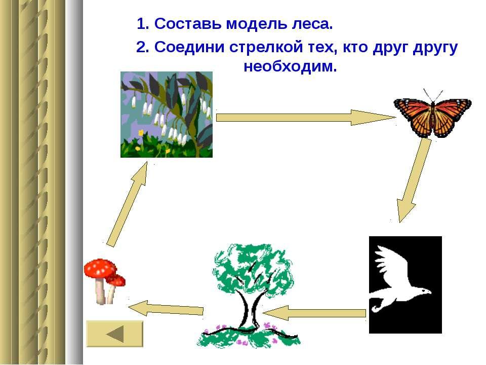 1. Составь модель леса. 2. Соедини стрелкой тех, кто друг другу необходим.