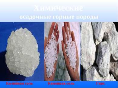 Химические осадочные горные породы Калийная соль Каменная соль Гипс