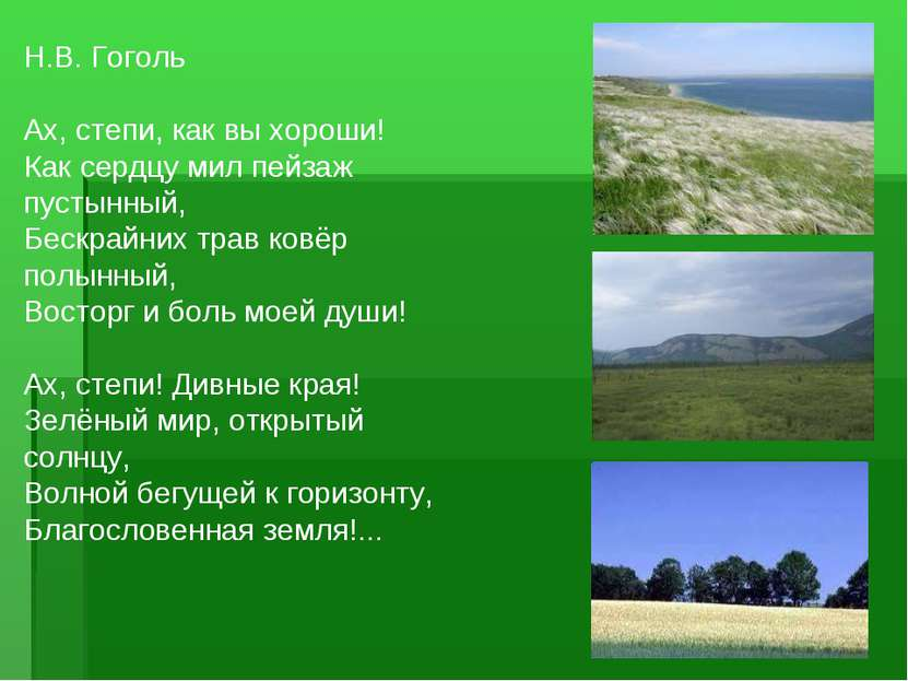 Н.В. Гоголь  Ах, степи, как вы хороши! Как сердцу мил пейзаж пустынный, Беск...