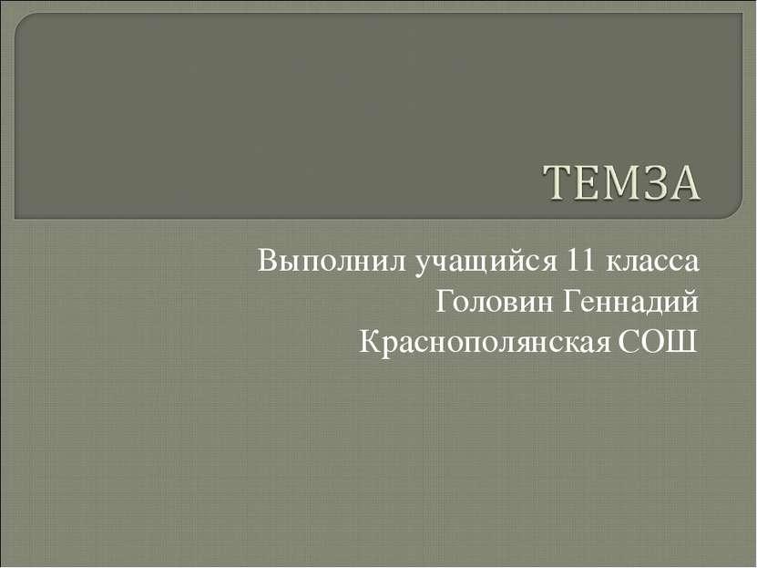 Выполнил учащийся 11 класса Головин Геннадий Краснополянская СОШ