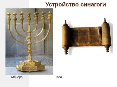 Устройство синагоги Менора Тора