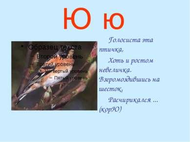Ю ю Голосиста эта птичка, Хоть и ростом невеличка. Взгромоздившись на шесток,...