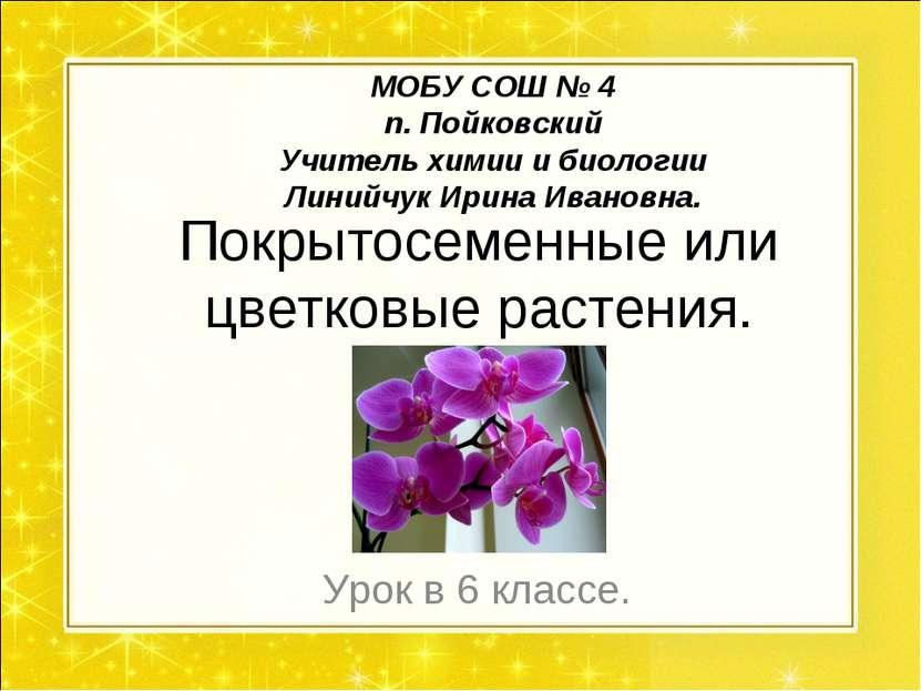 Покрытосеменные или цветковые растения. Урок в 6 классе. МОБУ СОШ № 4 п. Пойк...