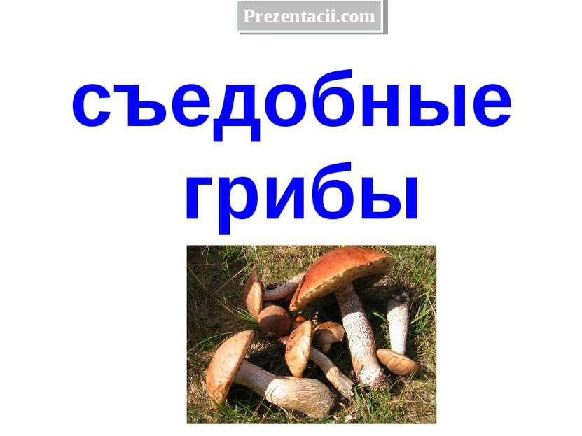 съедобные грибы Prezentacii.com