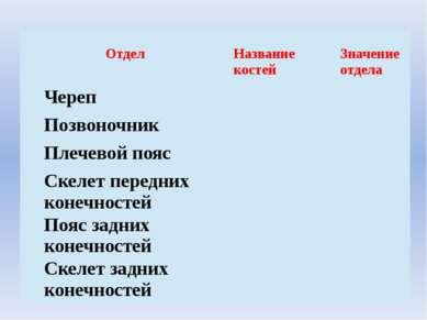 Отдел Название костей Значение отдела Череп Позвоночник Плечевойпояс Скелетпе...