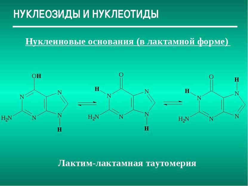 НУКЛЕОЗИДЫ И НУКЛЕОТИДЫ Нуклеиновые основания (в лактамной форме) Лактим-лакт...