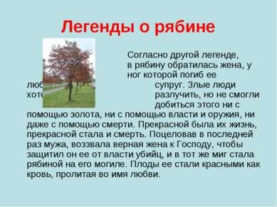 Легенды о рябине Согласно другой легенде, в рябину обратилась жена, у ног кот...
