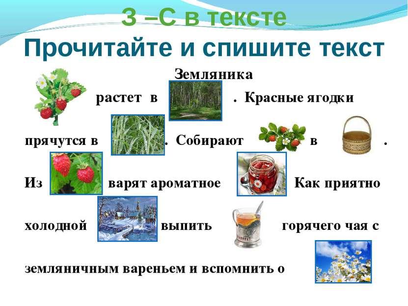 З –С в тексте Прочитайте и спишите текст Земляника растет в . Красные ягодки ...