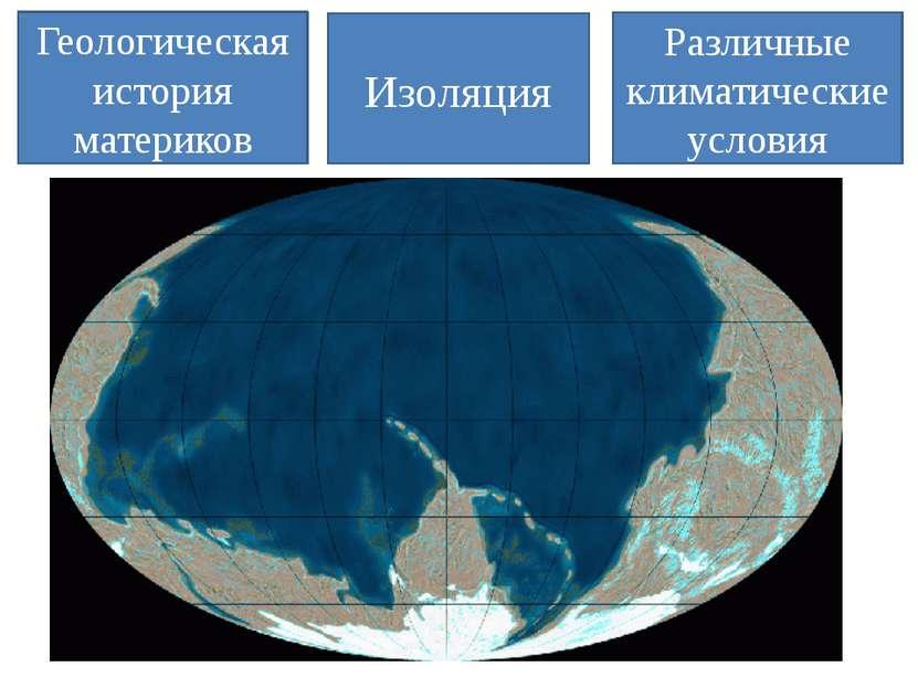 Геологическая история материков Изоляция Различные климатические условия
