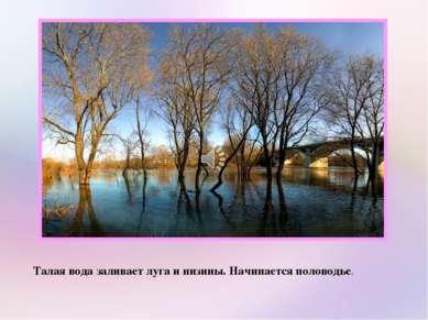 Талая вода заливает луга и низины. Начинается половодье.