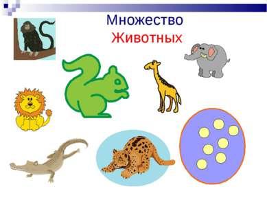 Множество Животных