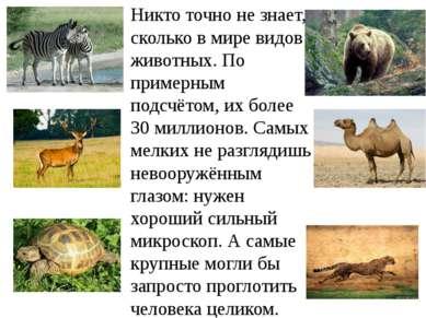 Никто точно не знает, сколько в мире видов животных. По примерным подсчётом, ...