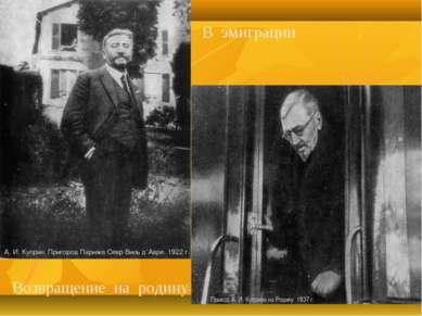 А. И. Куприн. Пригород Парижа Севр Виль Д' Авре. 1922 г. Возвращение на родин...