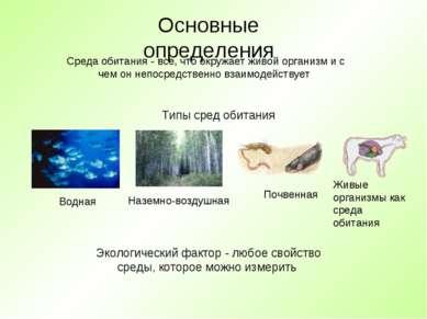 Основные определения Среда обитания - все, что окружает живой организм и с че...