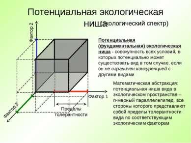 Потенциальная экологическая ниша Фактор 1 Фактор 2 Фактор 3 Потенциальная (фу...