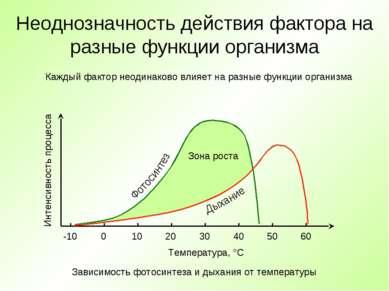 Неоднозначность действия фактора на разные функции организма Температура, °C ...
