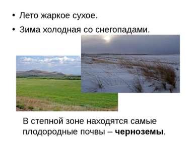 Лето жаркое сухое. Зима холодная со снегопадами. В степной зоне находятся сам...