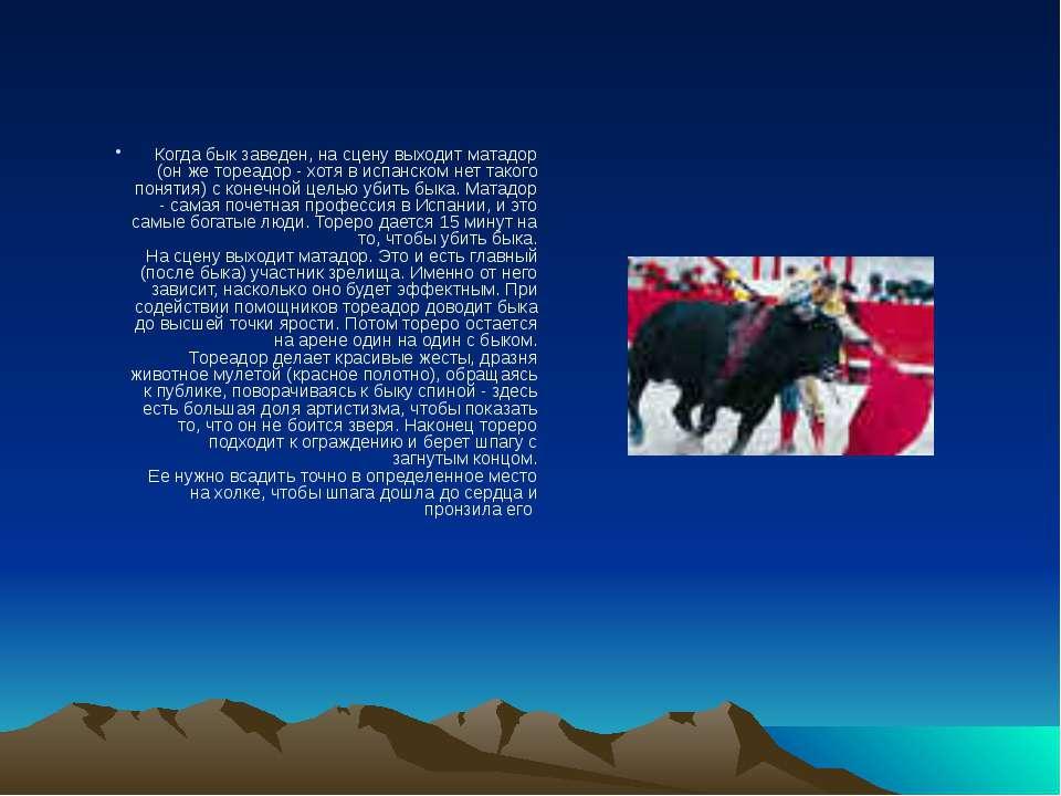 Когда бык заведен, на сцену выходит матадор (он же тореадор - хотя в испанско...