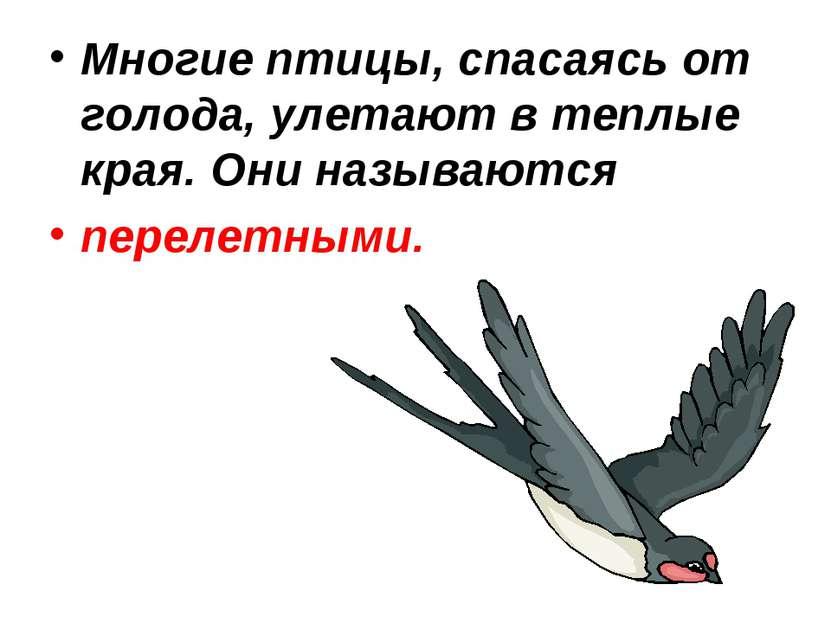 Многие птицы, спасаясь от голода, улетают в теплые края. Они называются перел...