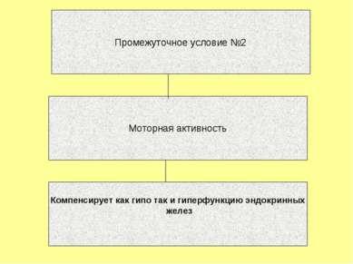 Промежуточное условие №2 Моторная активность Компенсирует как гипо так и гипе...
