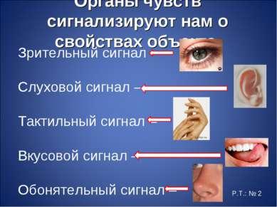 Органы чувств сигнализируют нам о свойствах объекта. Зрительный сигнал – Слух...