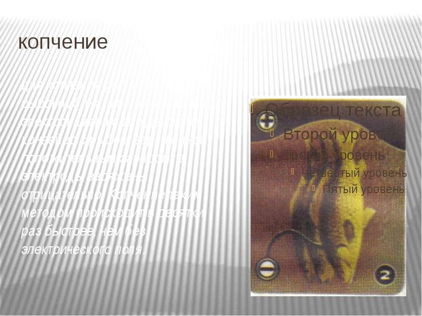 копчение для копчения рыбы на рыбокомбинатах – в специальных электрокамерах, ...