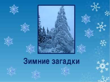 Зимние загадки