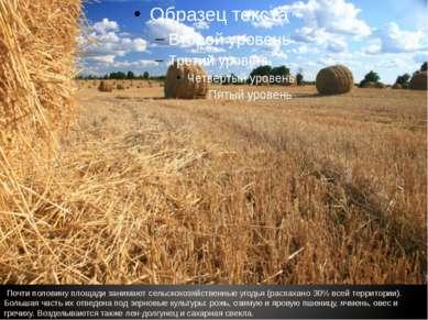 Почти половину площади занимают сельскохозяйственные угодья (распахано 30% вс...