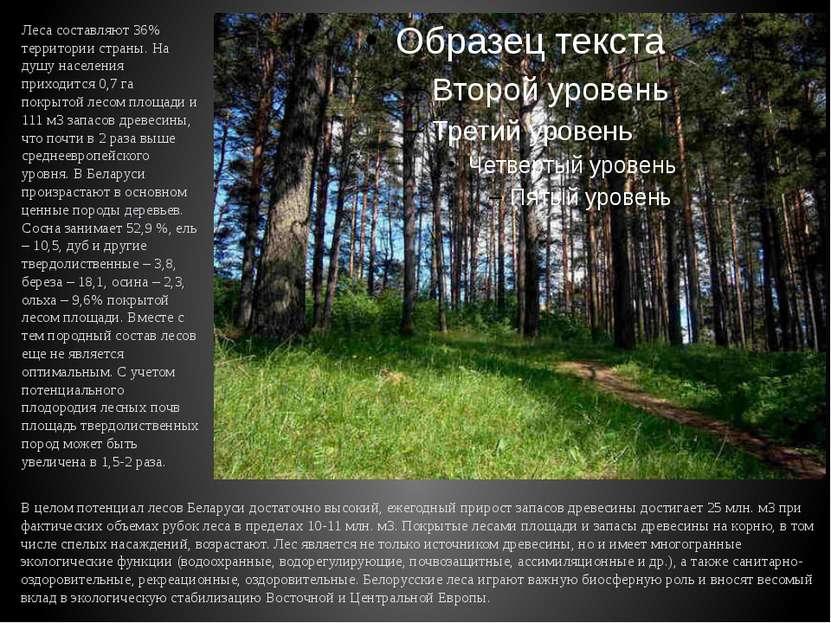Леса составляют 36% территории страны. На душу населения приходится 0,7 га по...