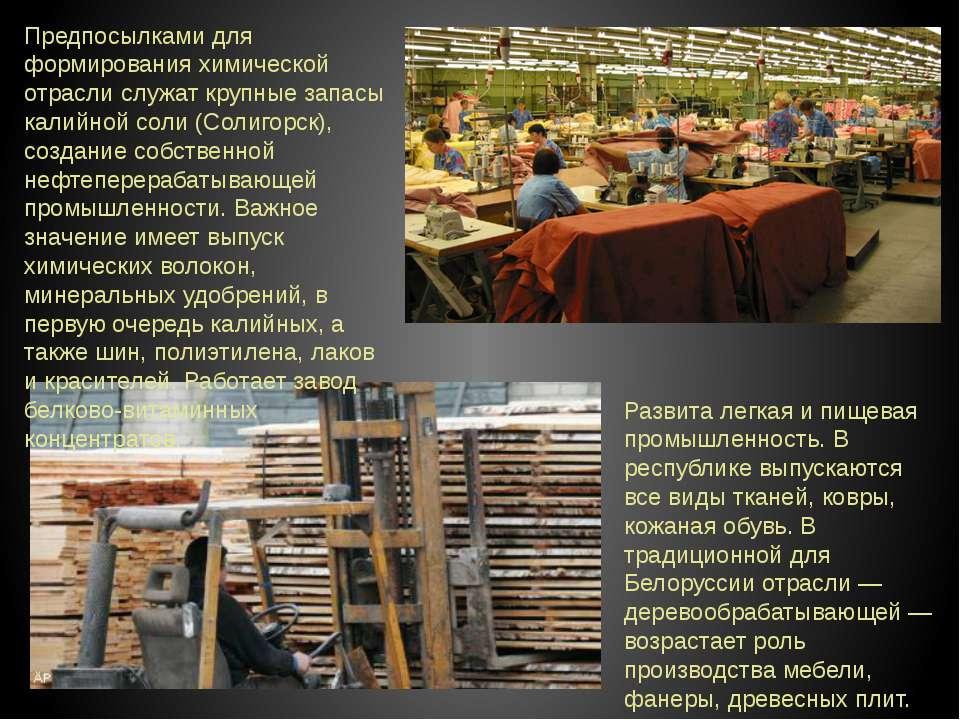 Предпосылками для формирования химической отрасли служат крупные запасы калий...