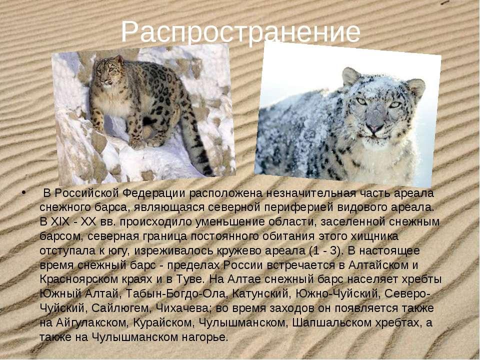 Распространение В Российской Федерации расположена незначительная часть ареал...