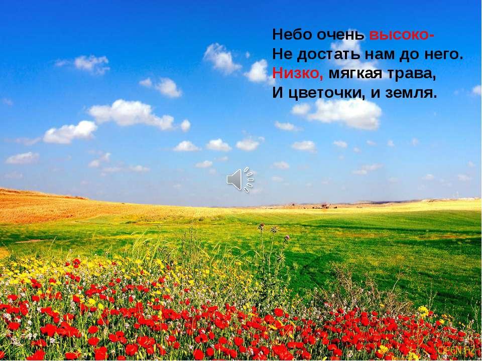 Небо очень высоко- Не достать нам до него. Низко, мягкая трава, И цветочки, и...