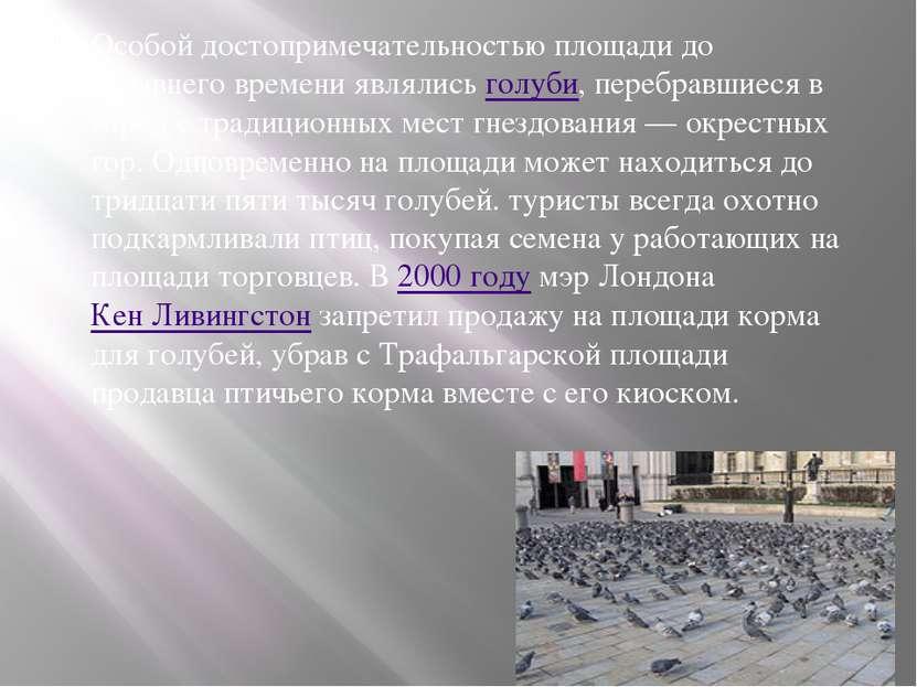 Особой достопримечательностью площади до недавнего времени являлись голуби, п...