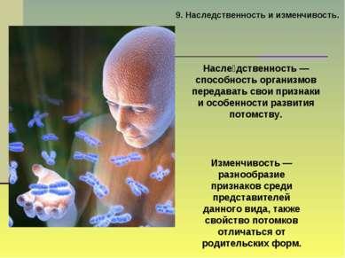 9. Наследственность и изменчивость. Насле дственность — способность организмо...