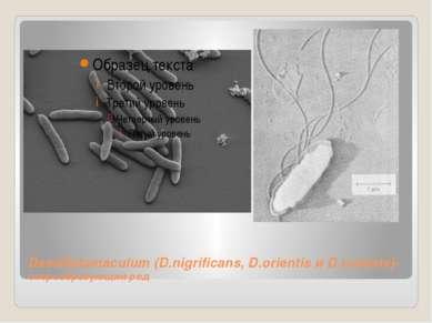 Desulfotomaculum (D.nigrificans, D.orientis и D.ruminis)-спорообразующий род