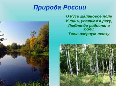 Природа России О Русь малиновое поле И синь, упавшая в реку, Люблю до радости...
