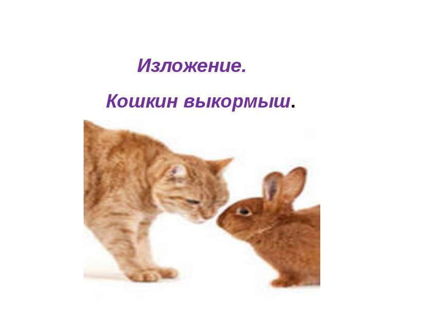 Кошкин выкормыш. Изложение.
