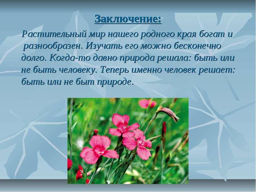 Заключение: Растительный мир нашего родного края богат и разнообразен. Изучат...