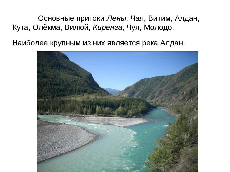 Основные притоки Лены: Чая, Витим, Алдан, Кута, Олёкма, Вилюй, Киренга, Чуя, ...