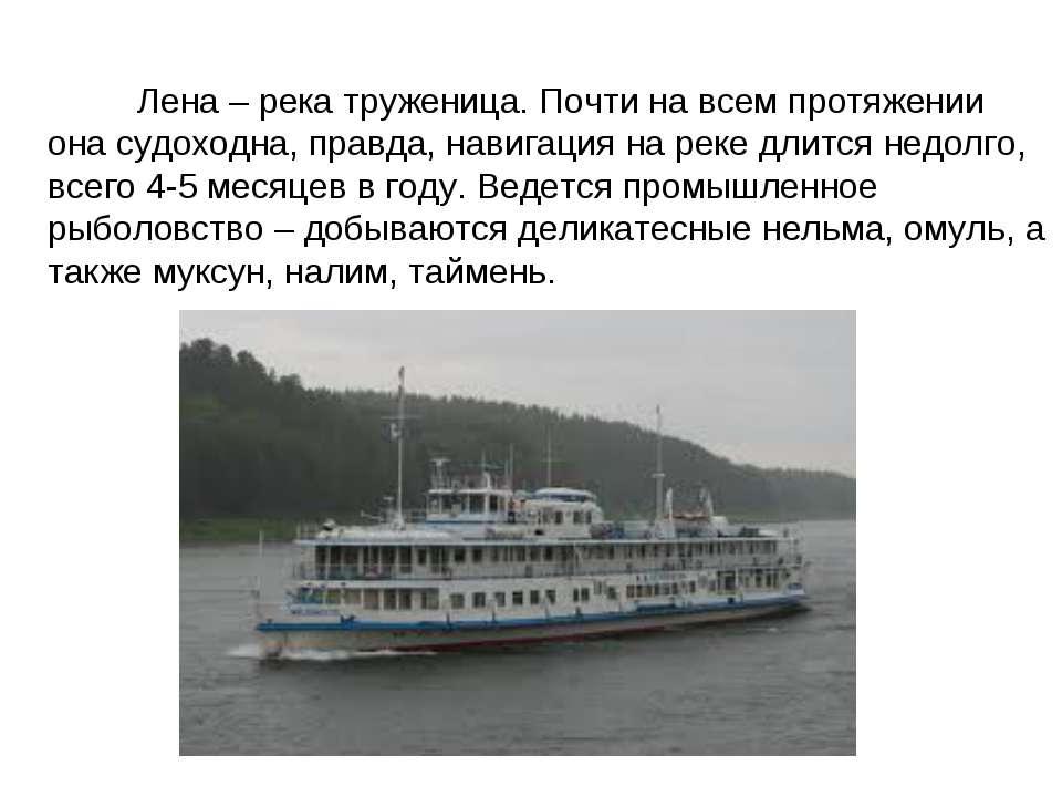 Лена – река труженица. Почти на всем протяжении она судоходна, правда, навига...
