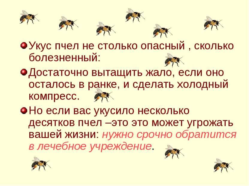 Укус пчел не столько опасный , сколько болезненный: Достаточно вытащить жало,...