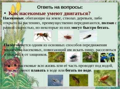 яйца личинки куколки муха Стадии развития насекомых ( на примере развития ком...