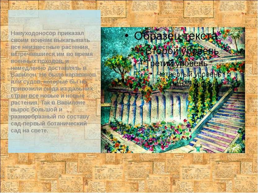 Навуходоносор приказал своим воинам выкапывать все неизвестные растения, встр...