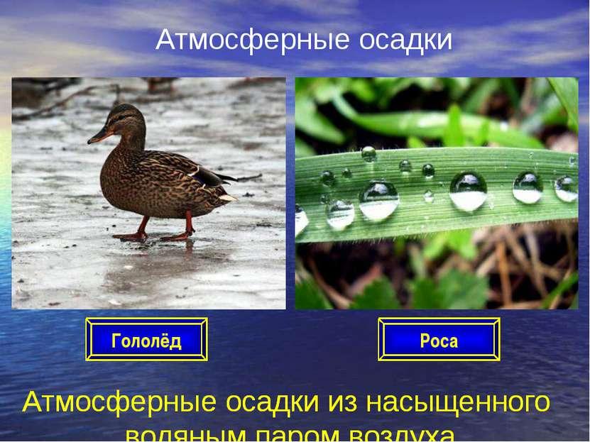 Атмосферные осадки Атмосферные осадки из насыщенного водяным паром воздуха Ро...